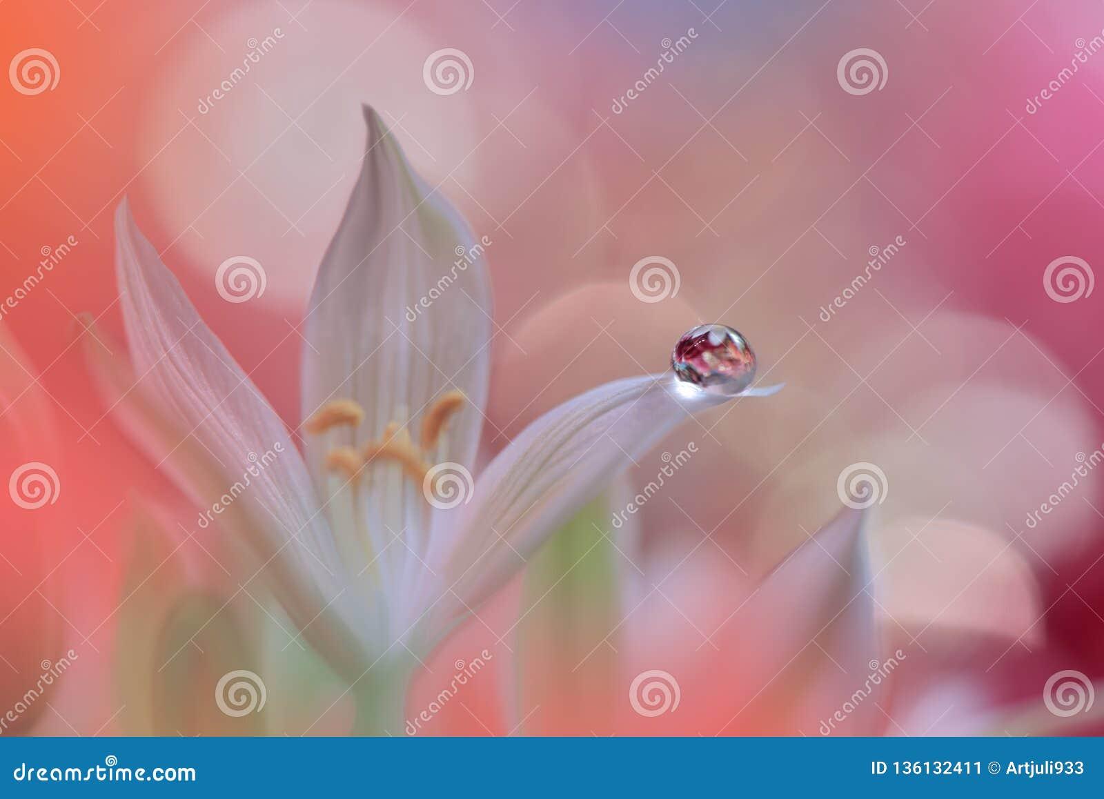 сеть весны природы коллектора цветения знамени Абстрактное фото макроса художническая предпосылка Дизайн фантазии Цветастые обои