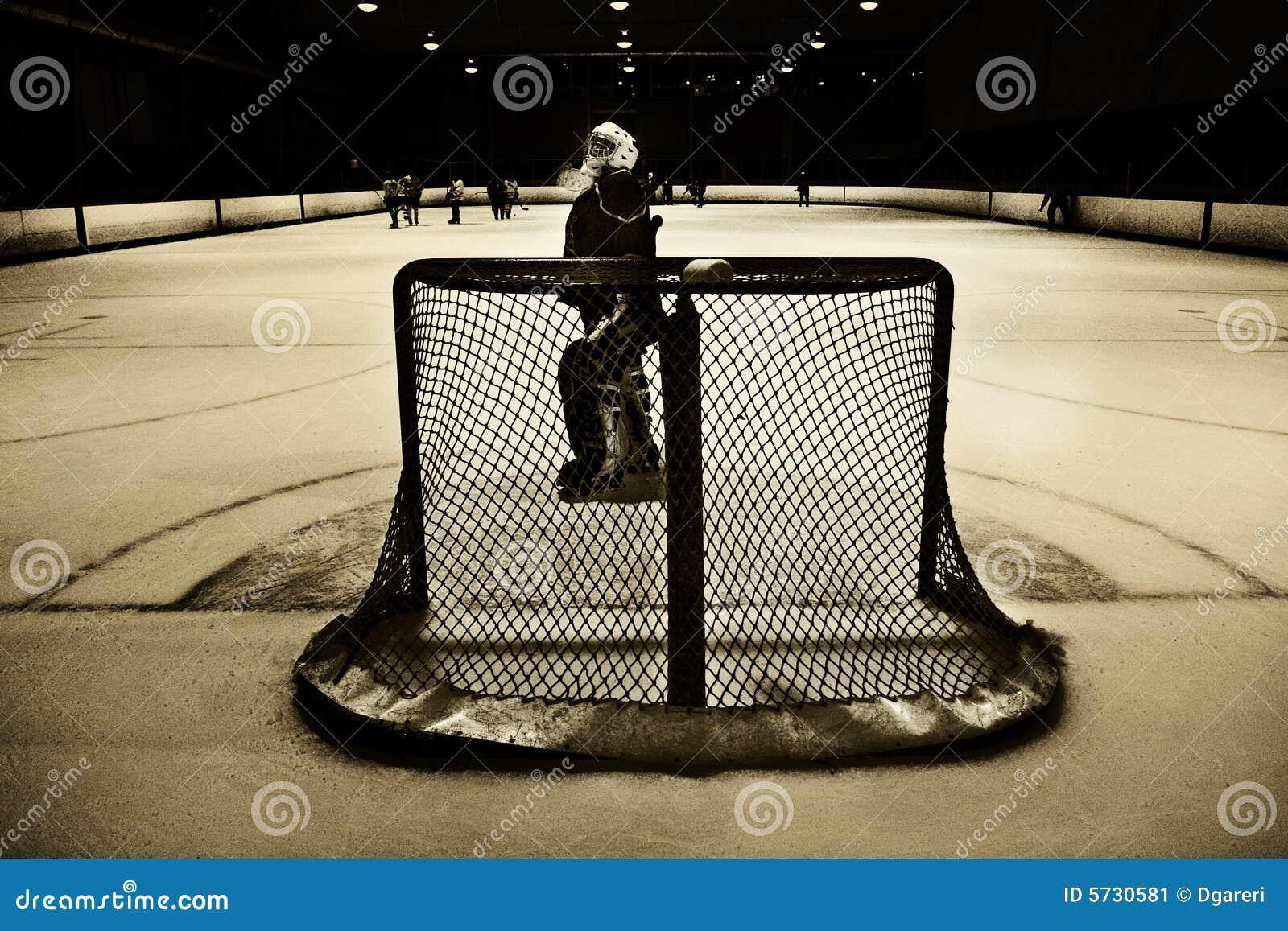 сеть хоккея вратаря