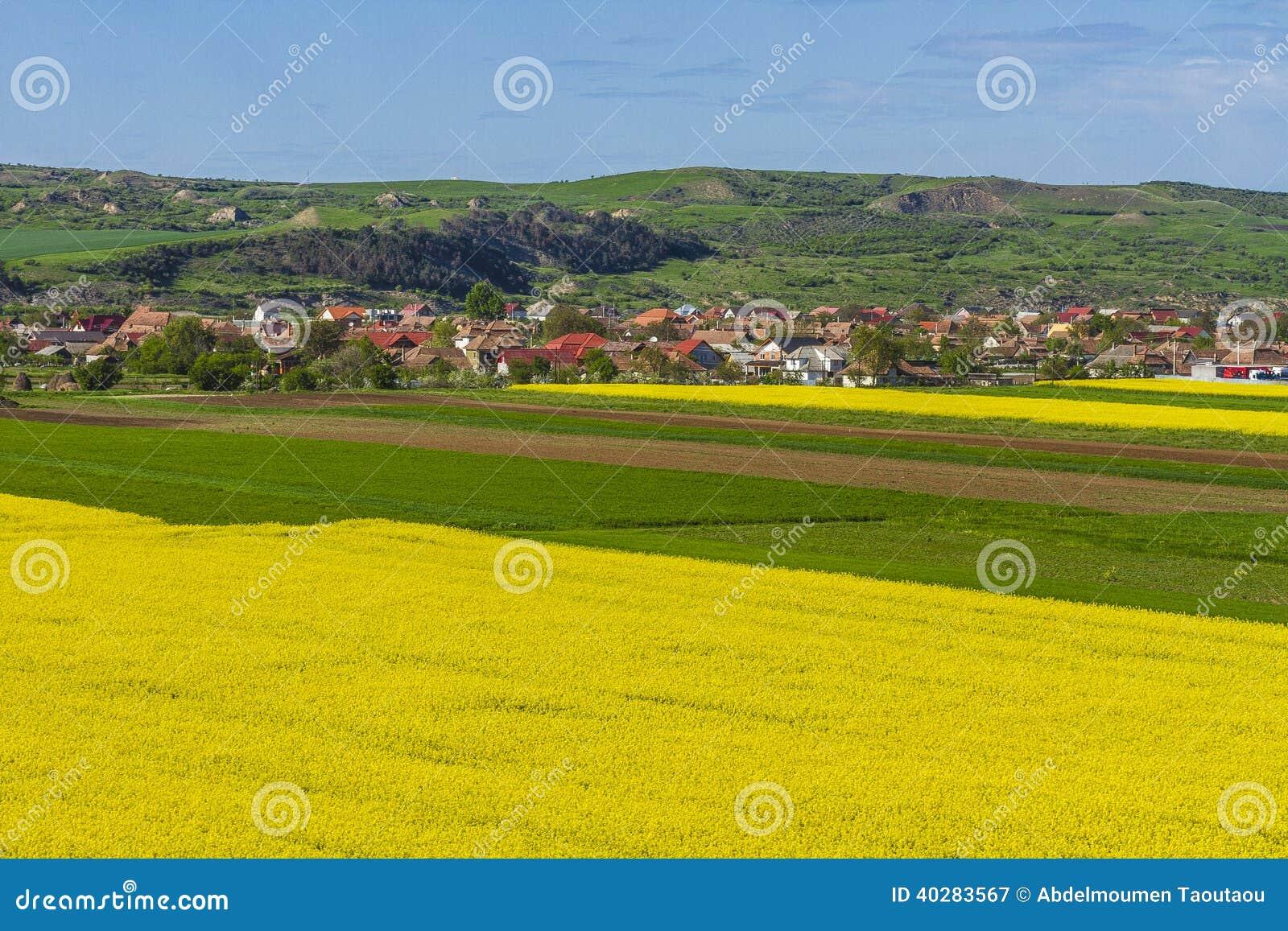 Сельская местность
