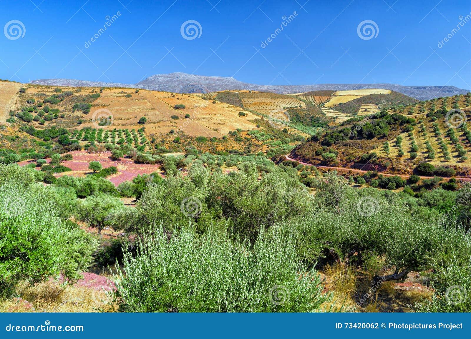 Сельская сцена, Крит, Греция