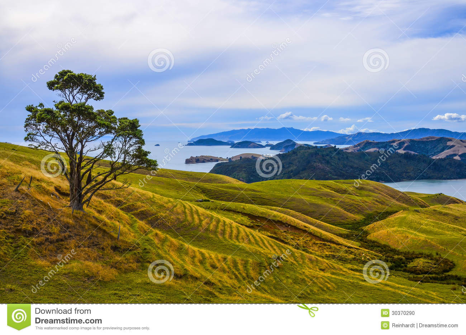 Сельский ландшафт, Новая Зеландия