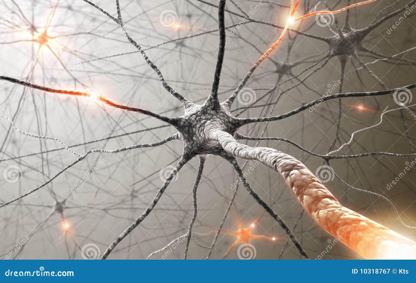 сила невронов разума