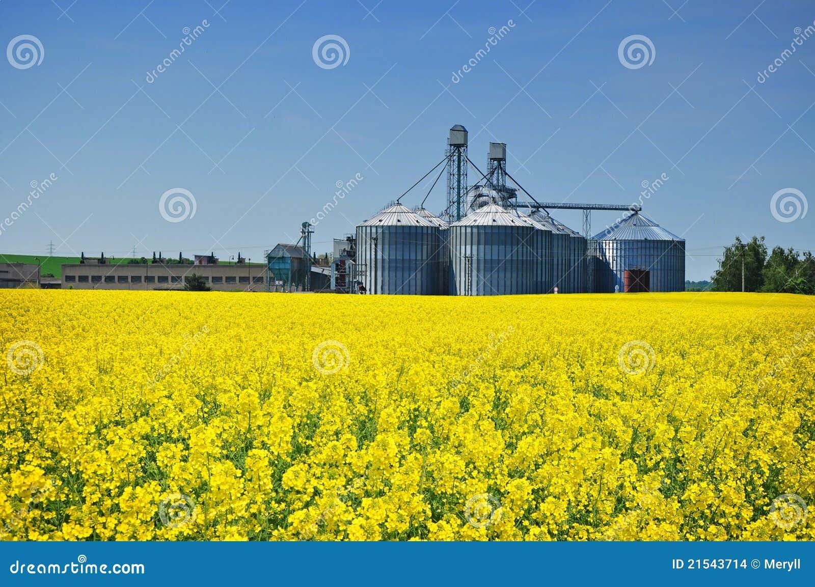 силосохранилище фермы земледелия