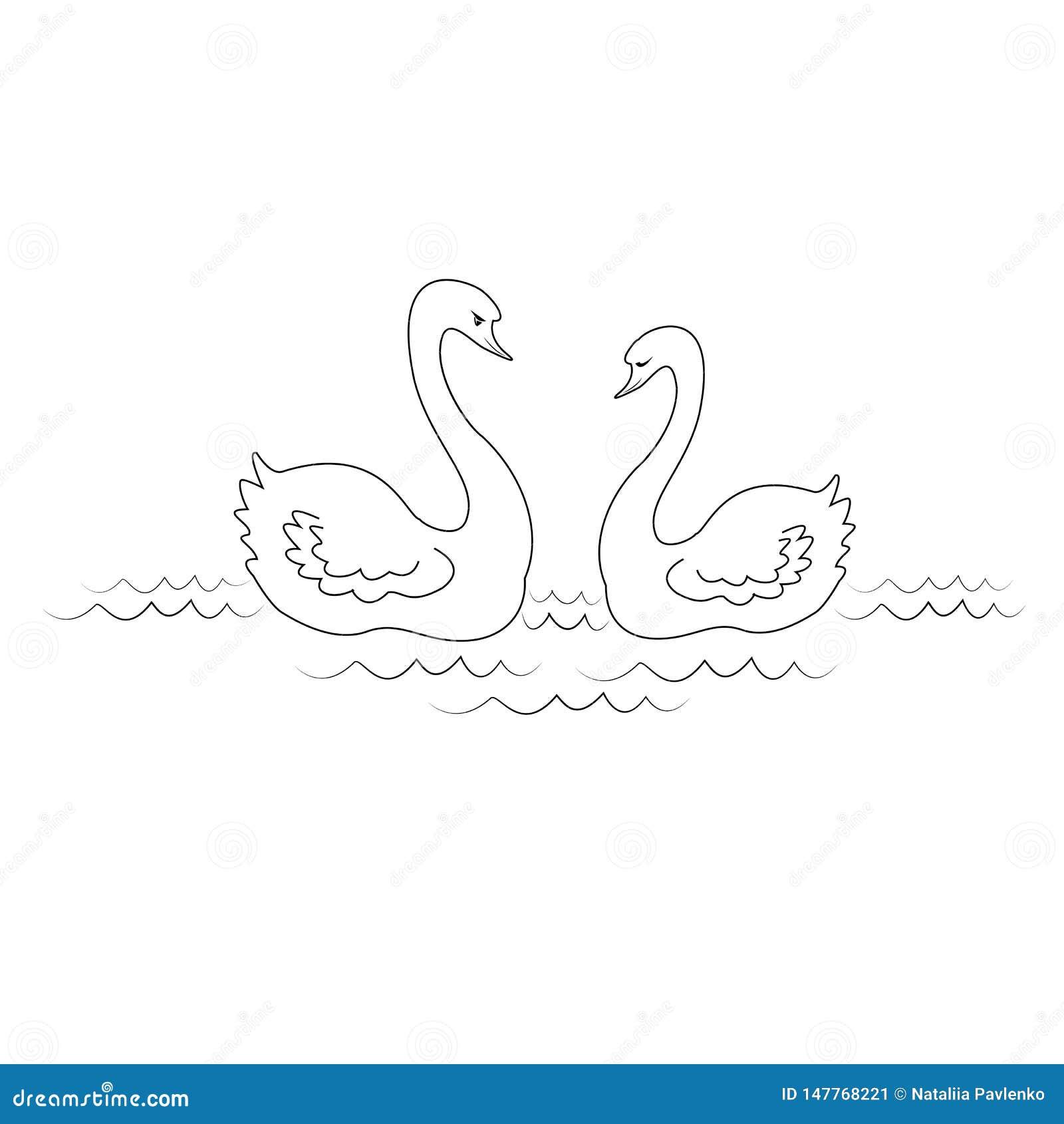 Силуэт 2 лебедей в любов Птицы плавают в воде реки r
