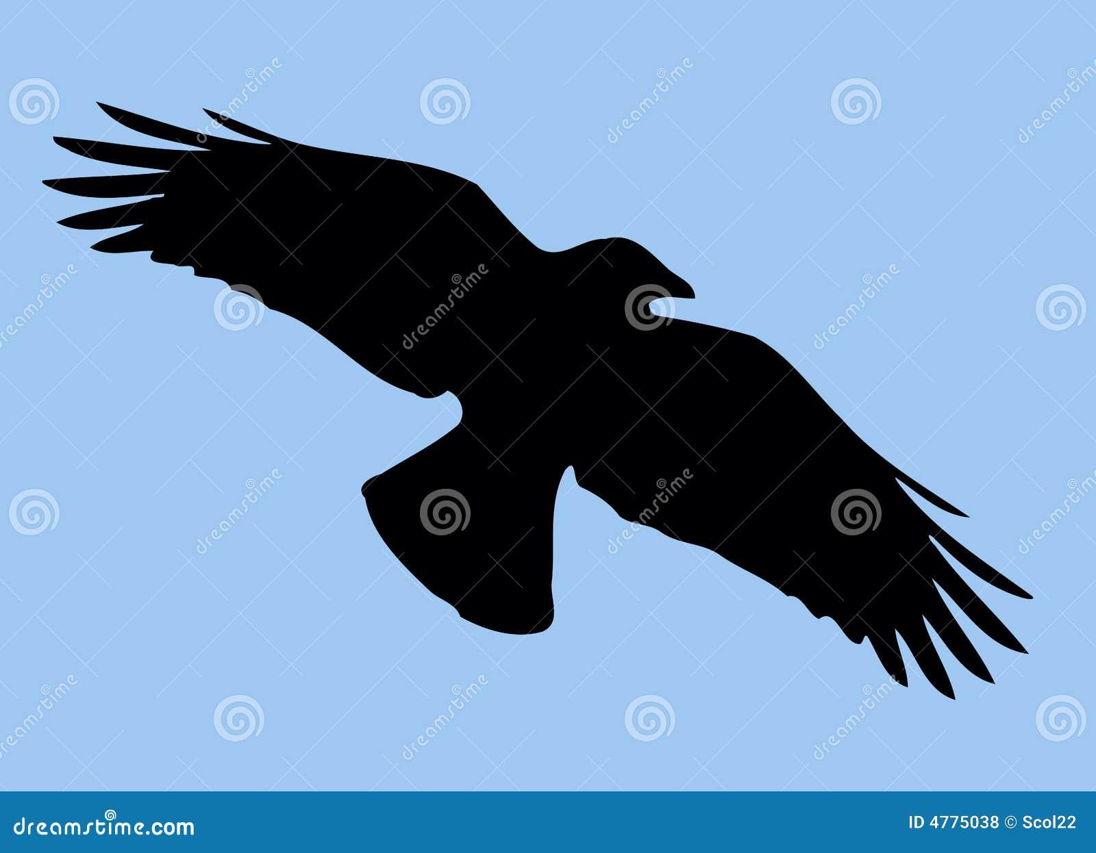 силуэт птицы