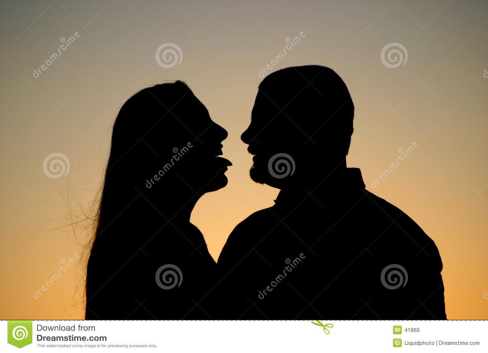силуэт flirt пар