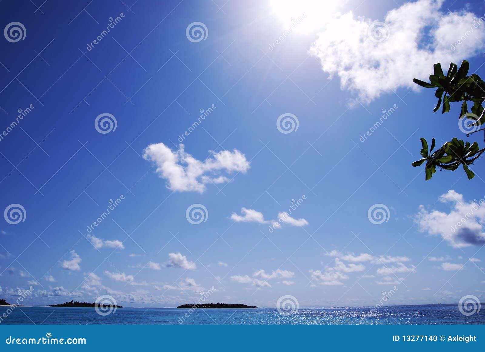 синь заволакивает белизна неба