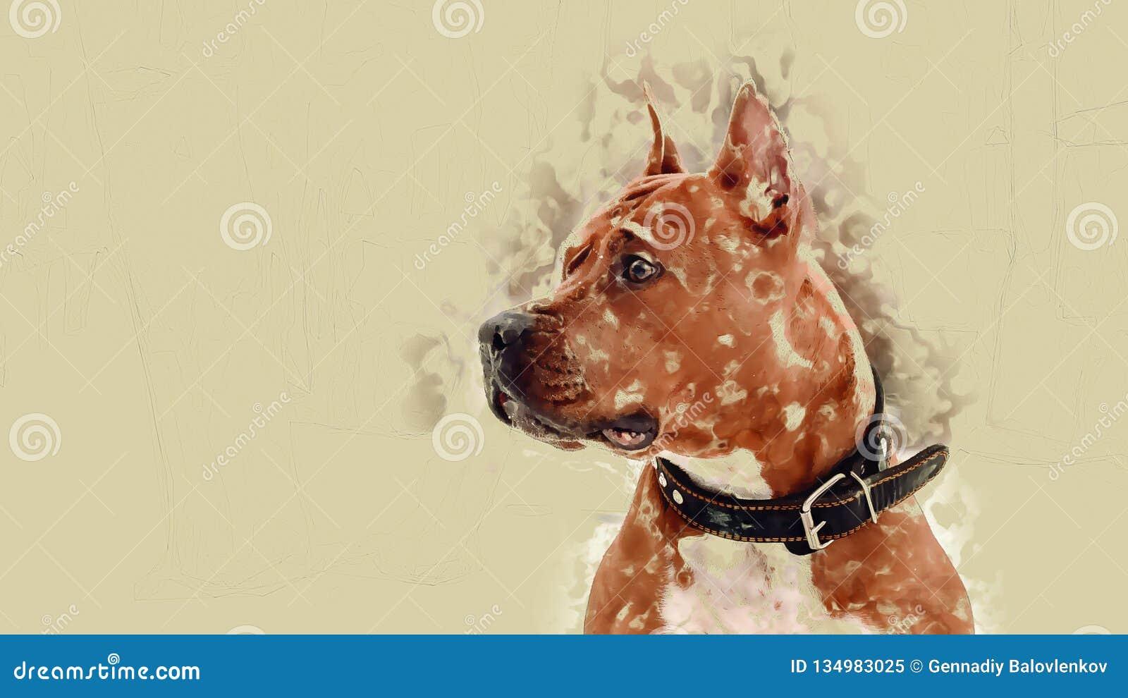 Сиротливая собака, ждущ владельца, защищая место их совместных прогулок в зиме Сильное желание собаки
