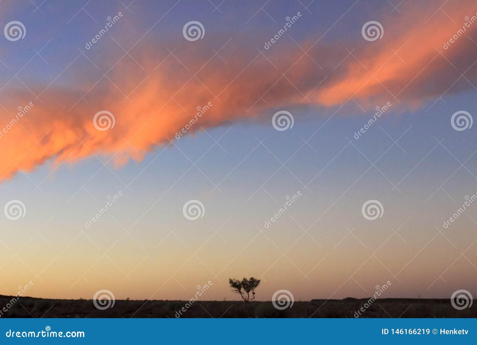 Сиротливое дерево и красивые облака