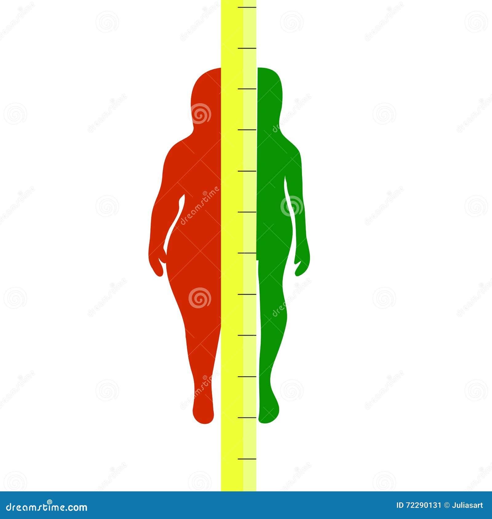 Download Силуэты женщин толстых и тонких также вектор иллюстрации притяжки Corel Иллюстрация вектора - иллюстрации насчитывающей людск, еда: 72290131