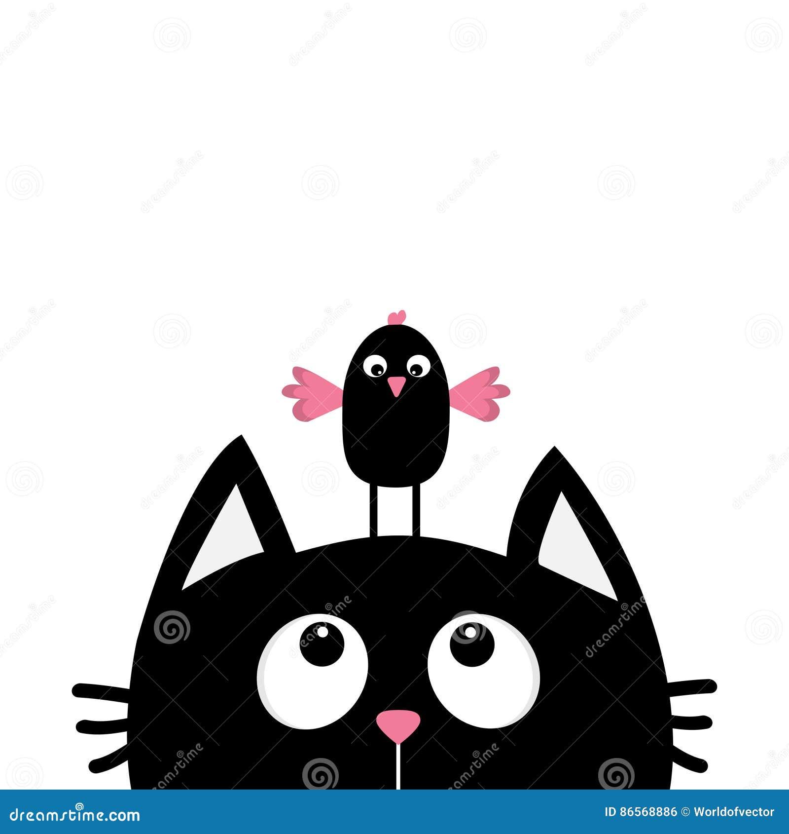 Мультик смешная птица и кот