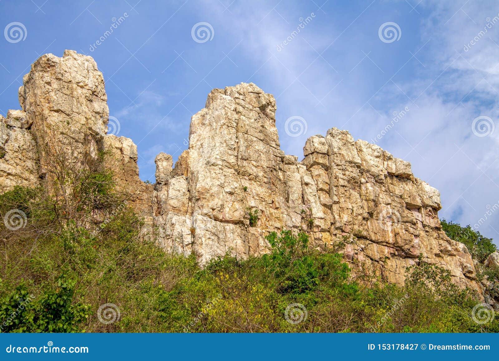 Скалы в большом лесе
