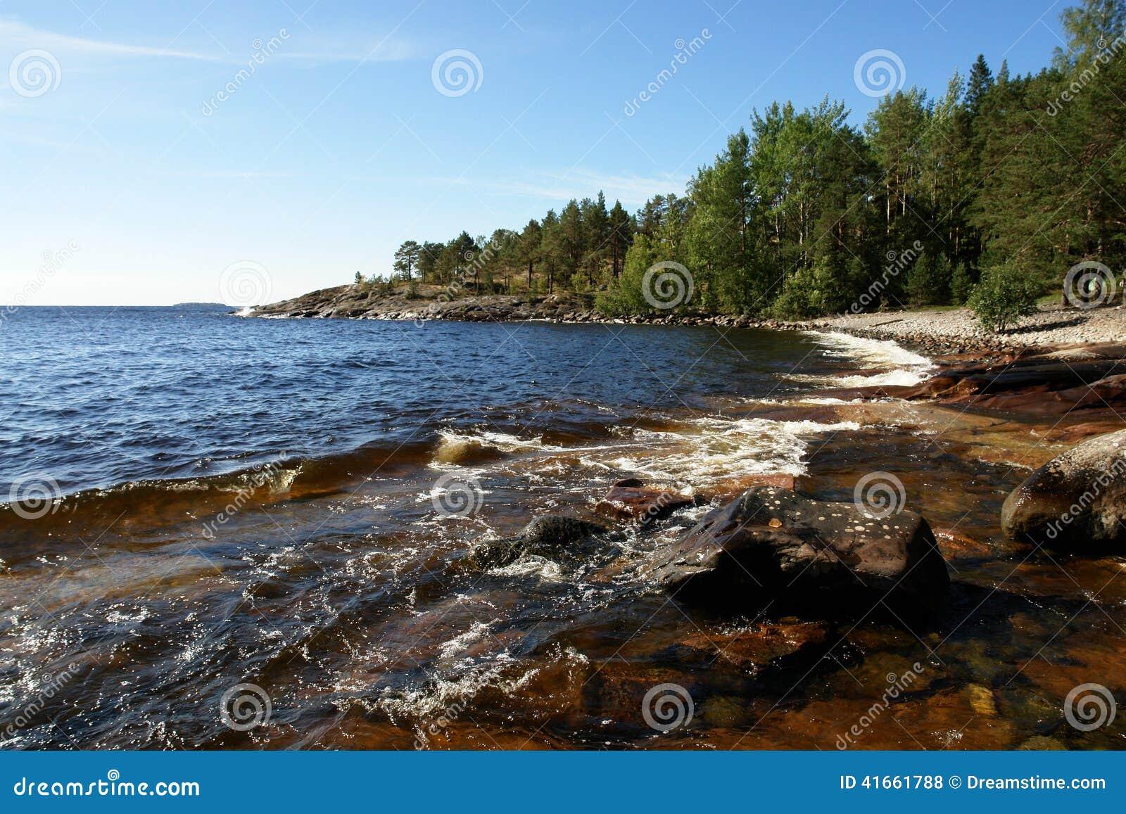 Скалистый берег с лесом