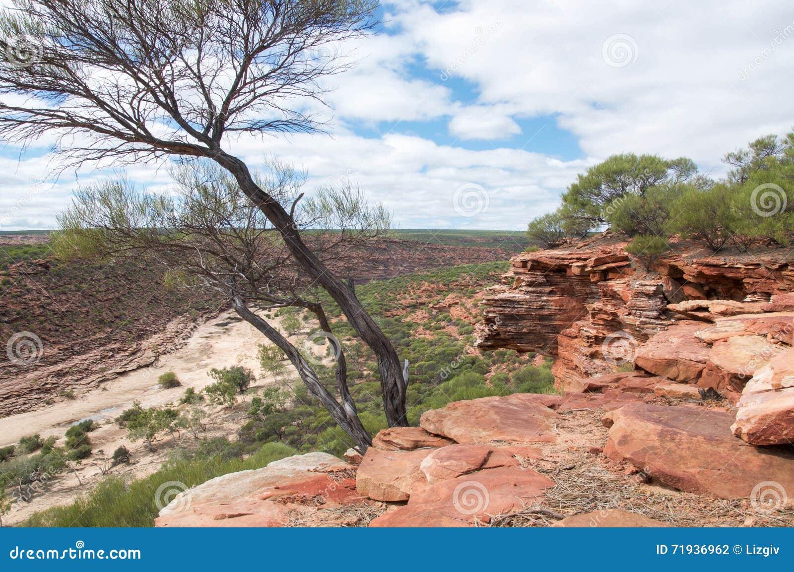 Скалы песчаника и ущелье реки Murchison
