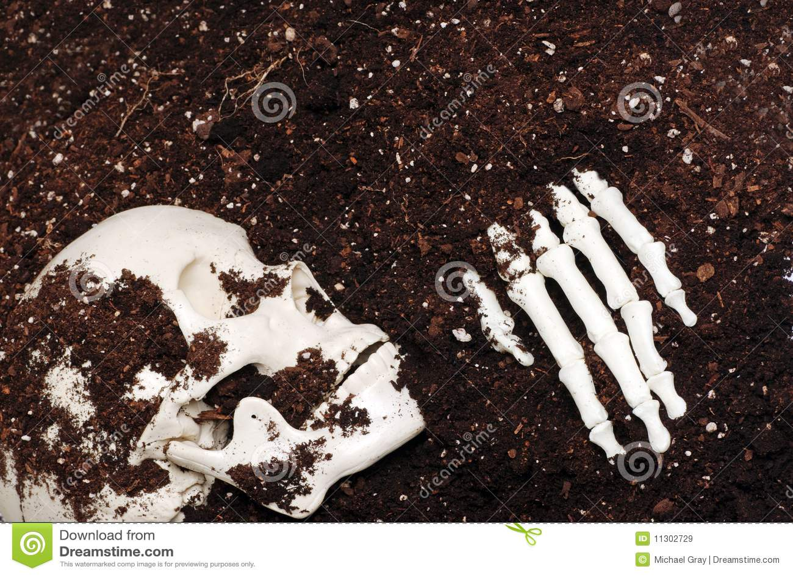 скелет грязи
