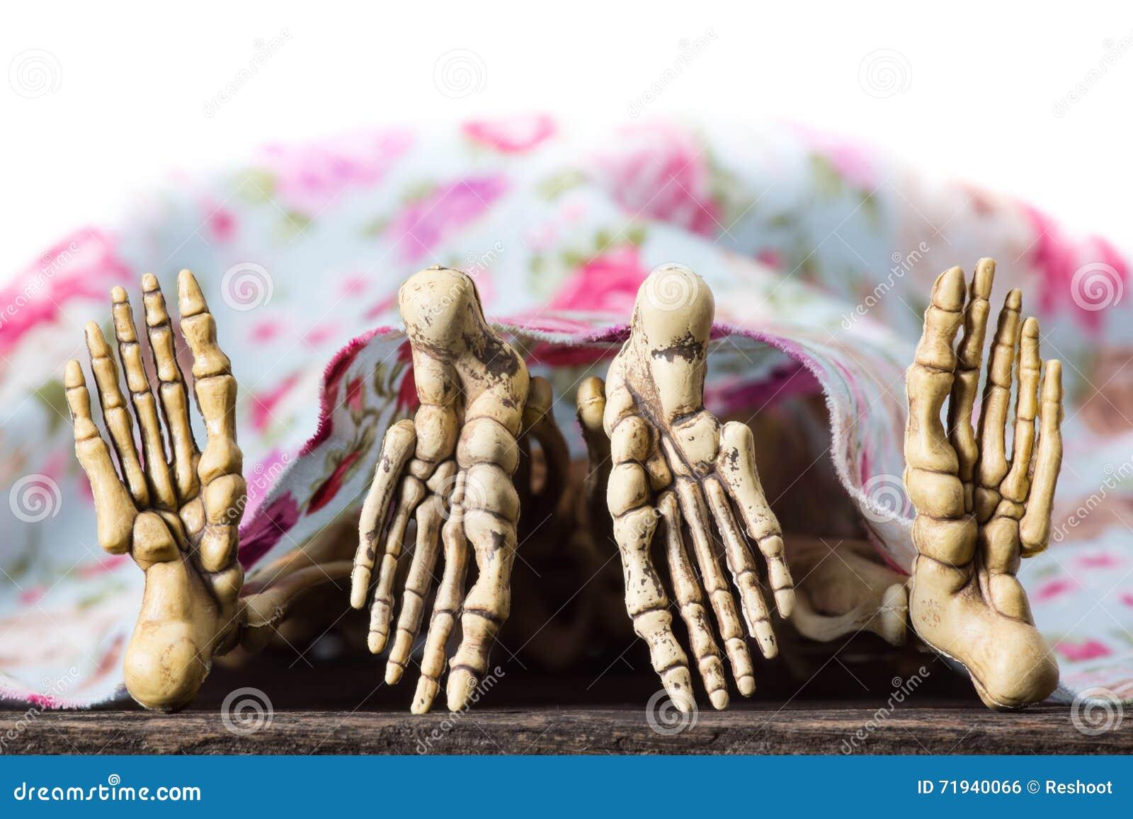 Скелеты имея секс под одеялом