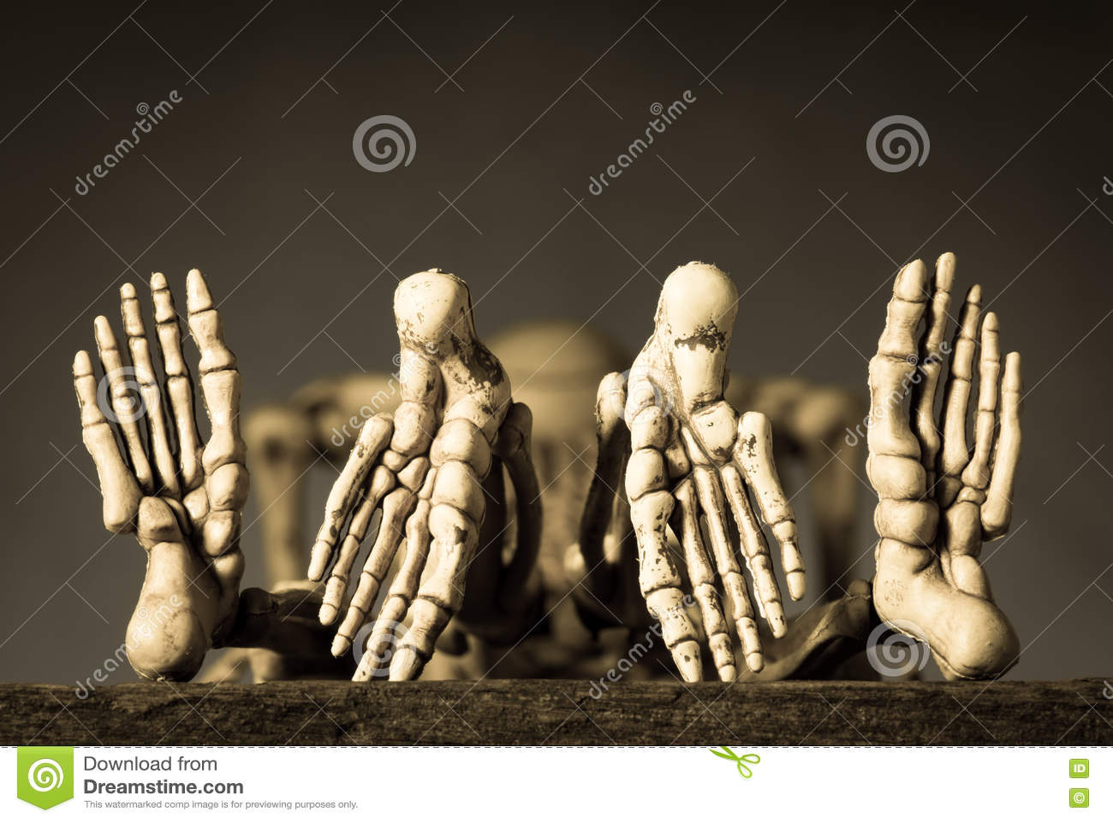 Скелеты имея секс