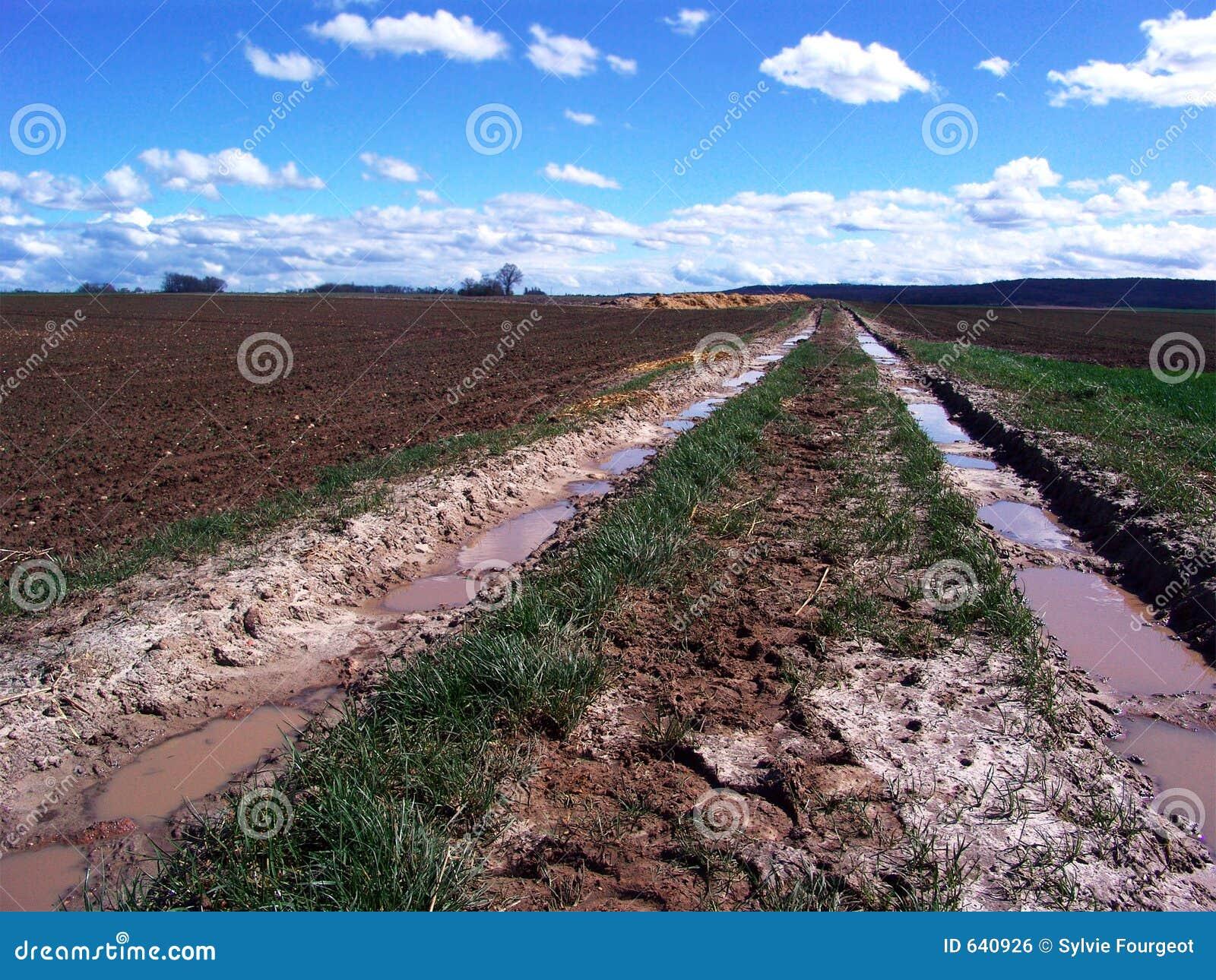 Download след сельской местности тинный Стоковое Фото - изображение насчитывающей сельско, тинно: 640926