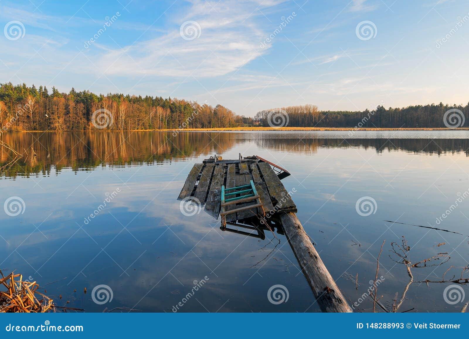 Сломленная мола на озере в лесе