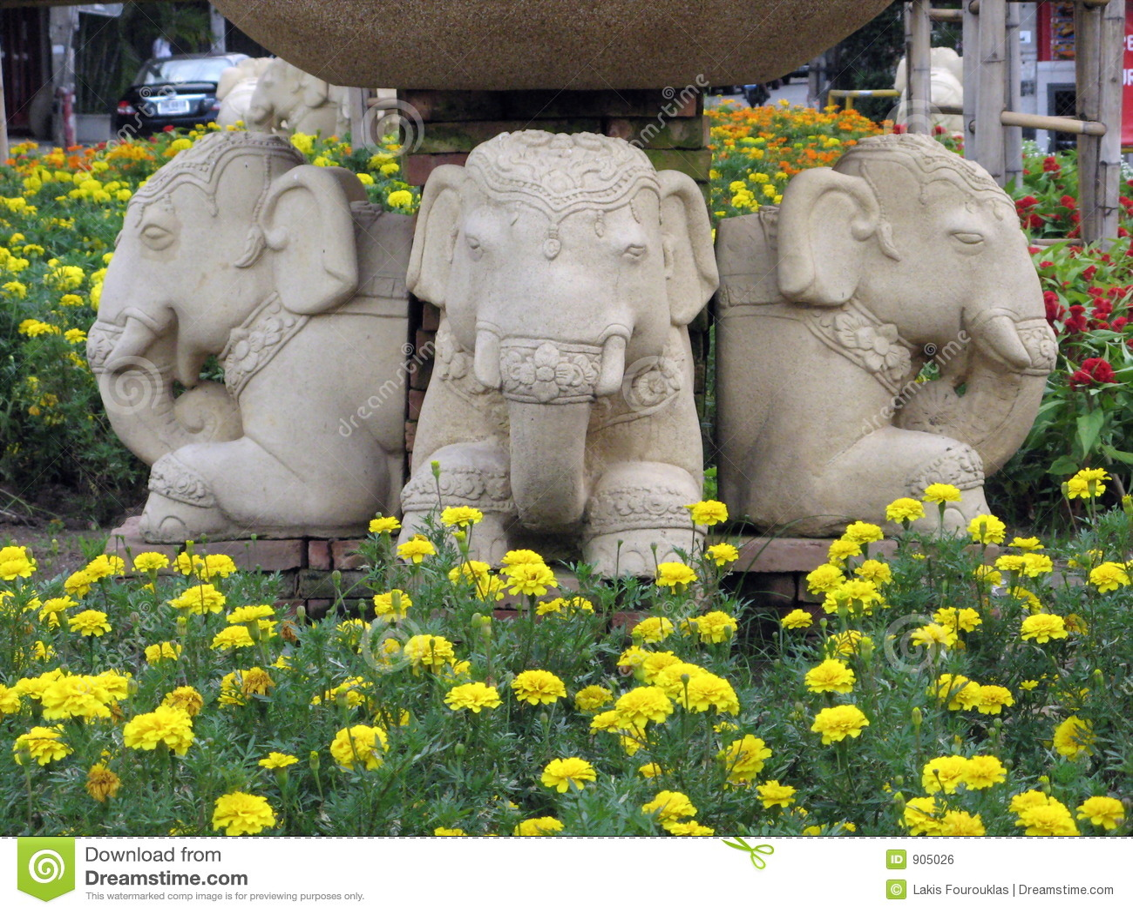 слоны города