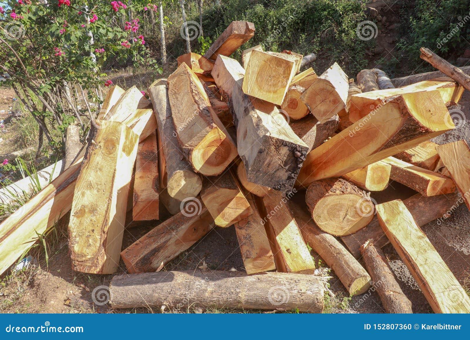 Случайно сложенная куча древесины в зацветая саде Деревянные балки и журналы с деревьями и предпосылкой цветков Свежо отрезанная