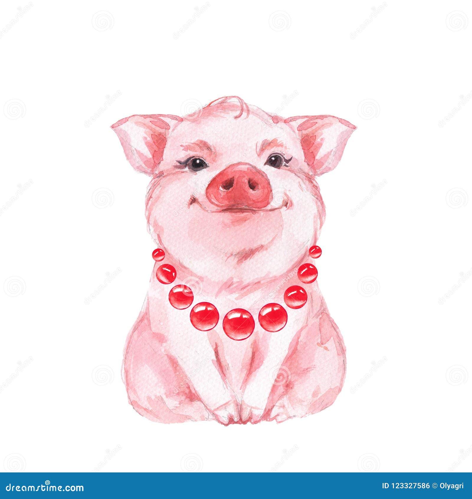 смешная свинья Изолировано на белизне