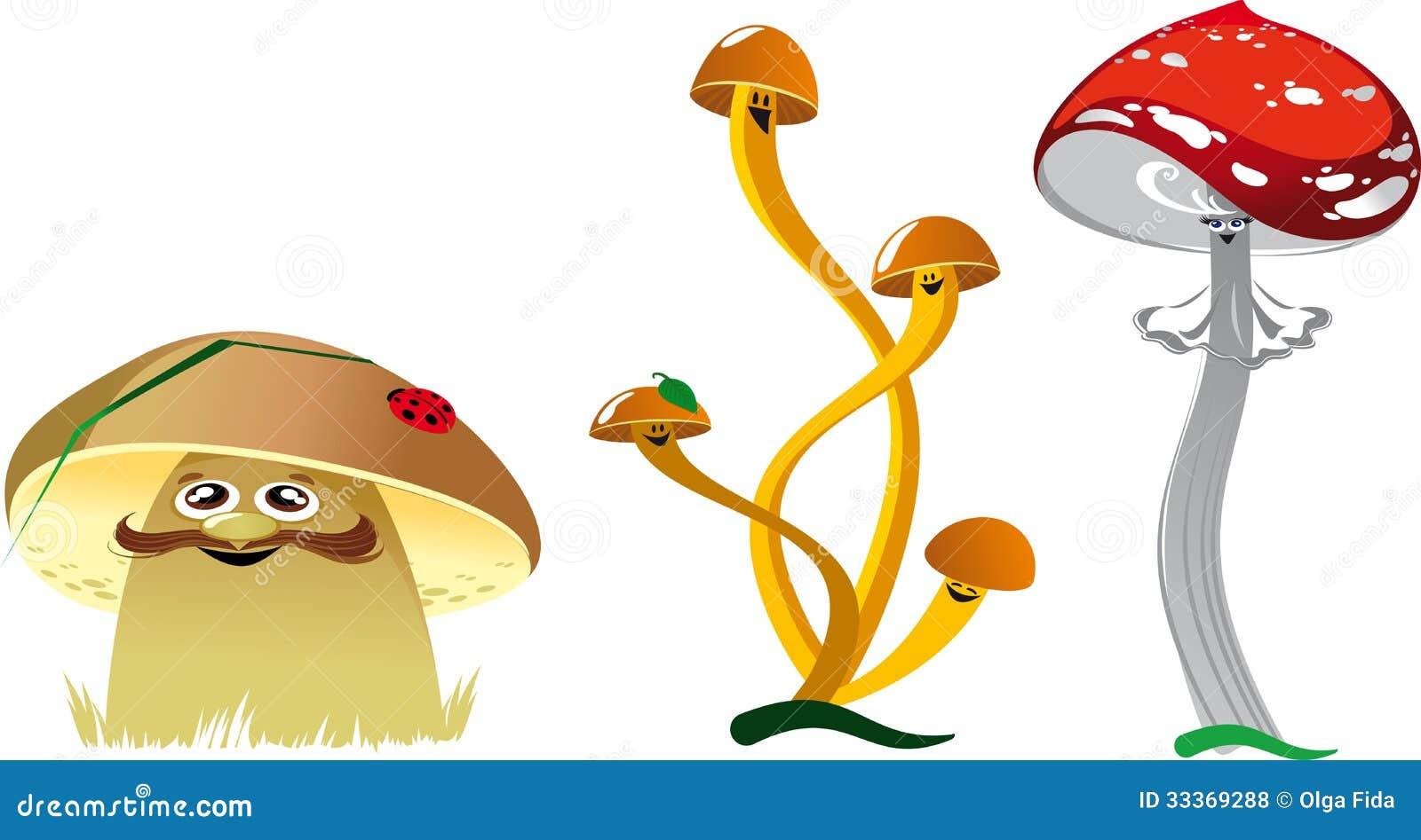 картинки смешные с грибами