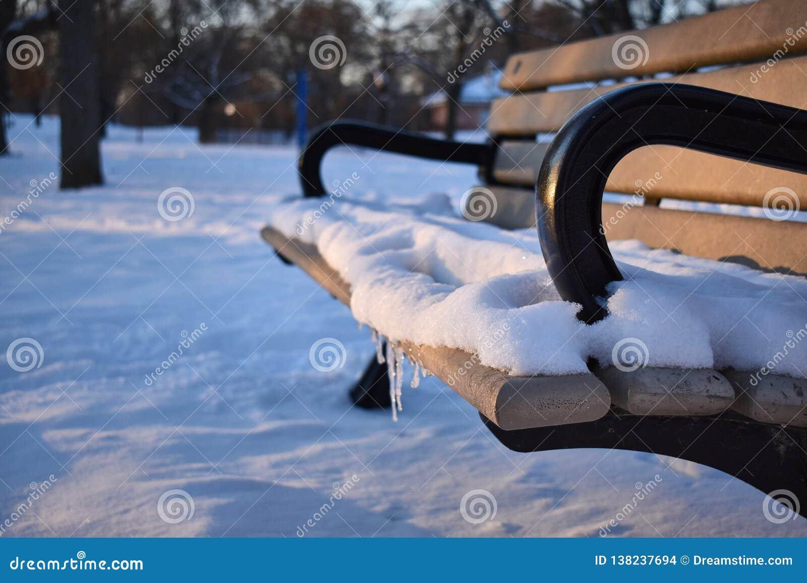 Снег зимы на скамейке в парке