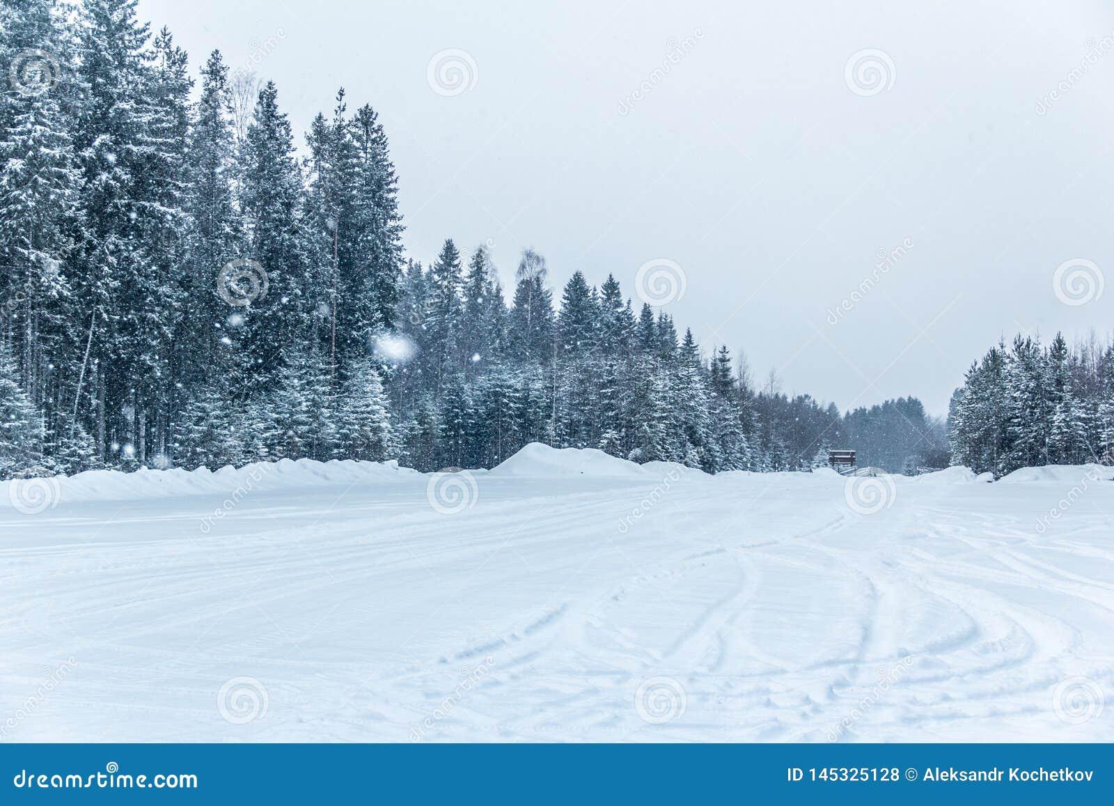 Снег и лед красивого Karelia