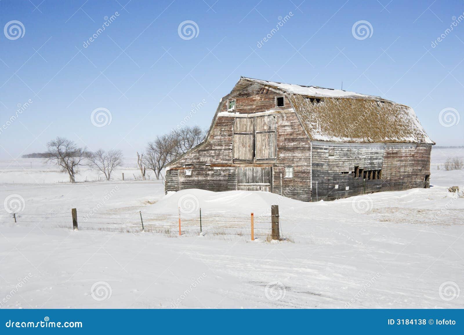 снежок амбара