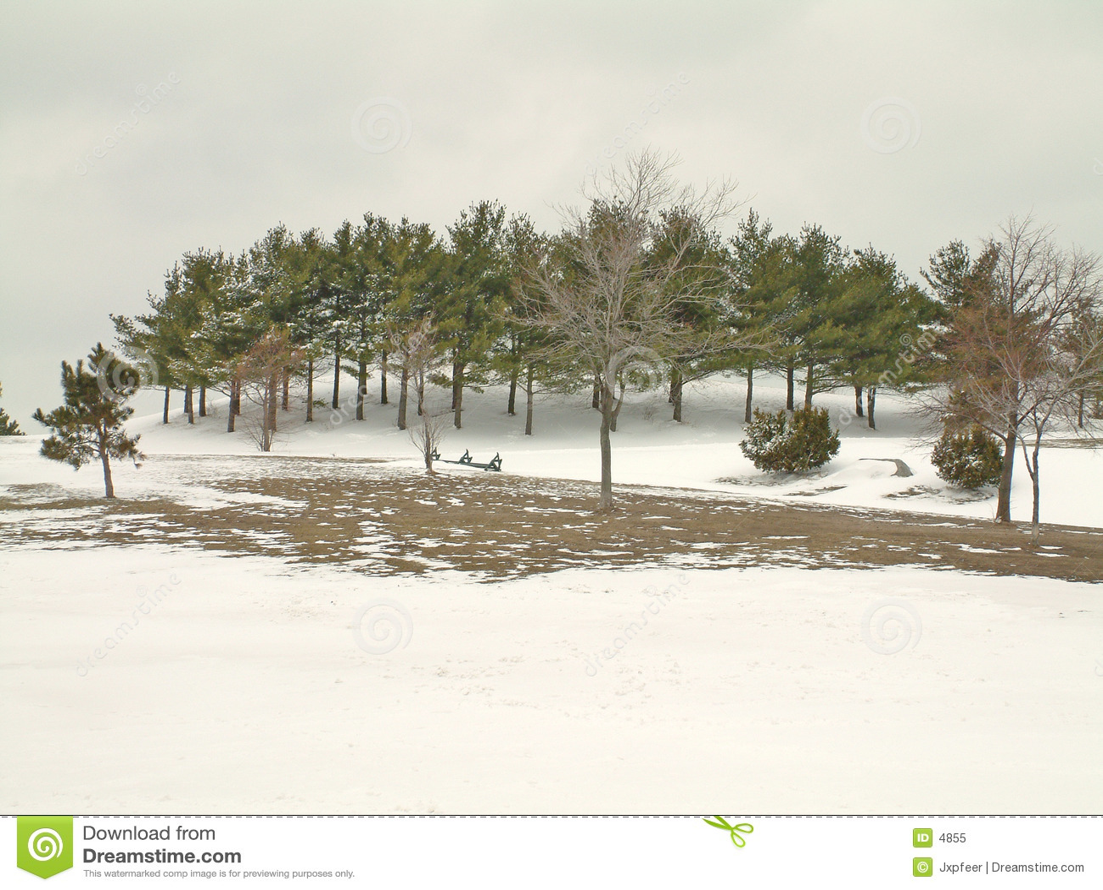 снежок парка