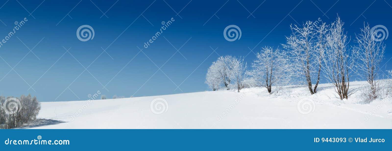 снежок пейзажа