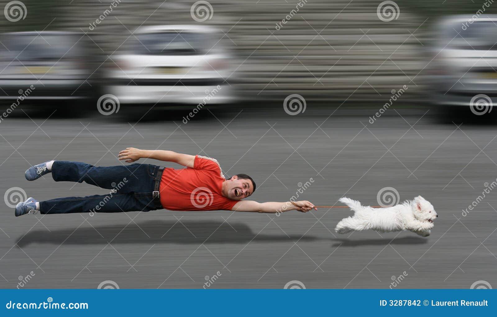 собачье образование
