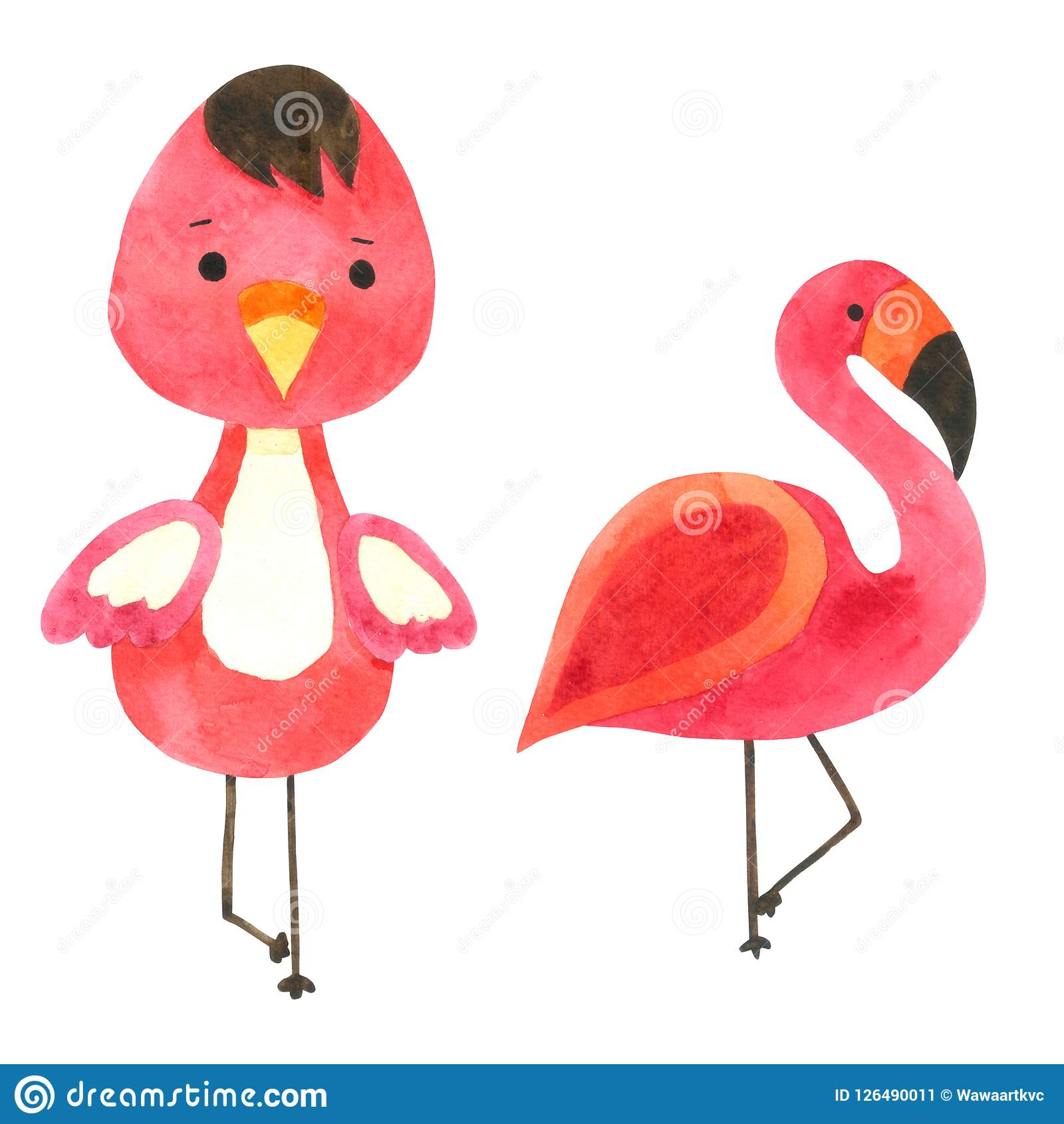 План детей Xenops птицы книжка-раскраски для игры Иллюстрация вектора -  иллюстрации насчитывающей дети, загадка: 60994032 | 1690x1600