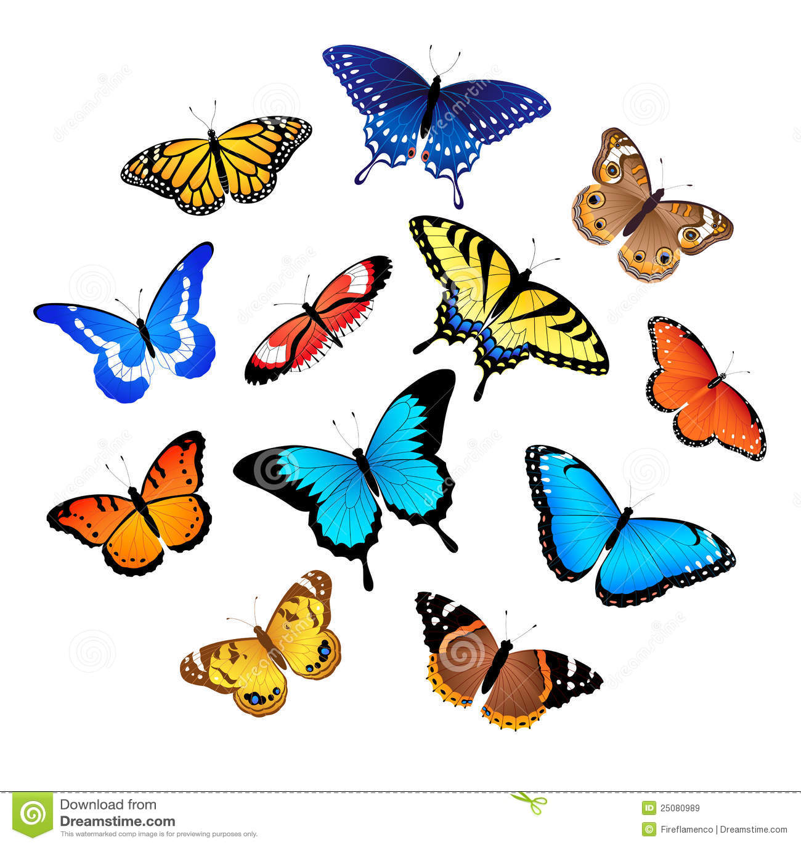 собрание бабочек