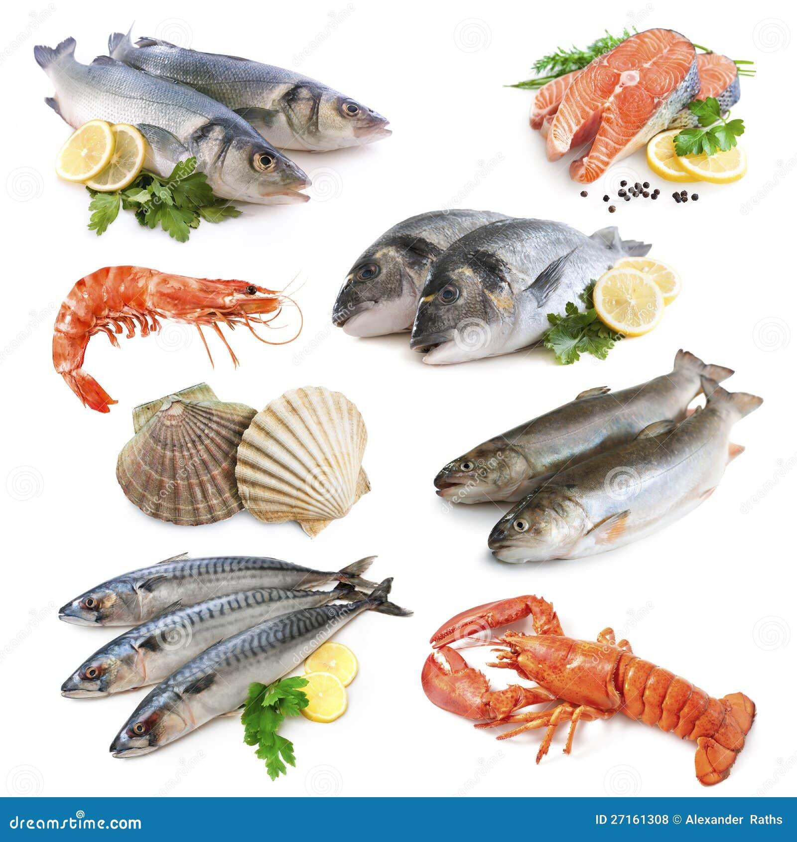 Собрание рыб