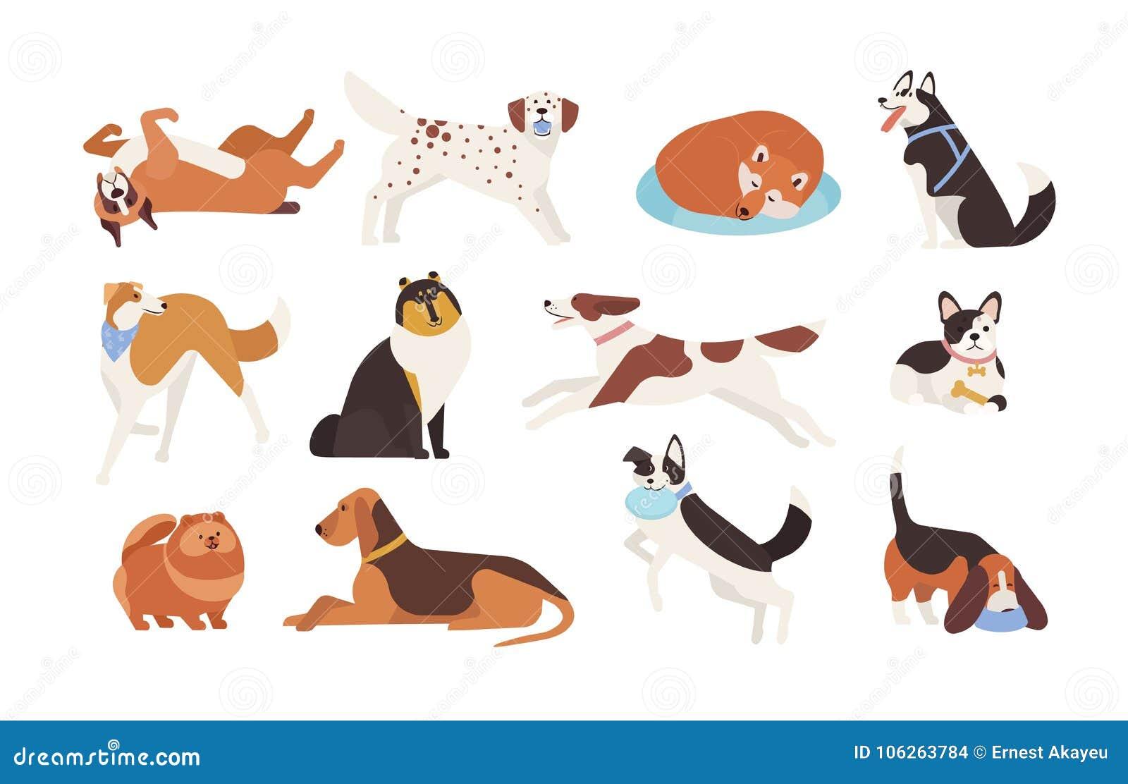Собрание смешных собак различных пород играя, спящ, лежать, сидя Комплект милого и забавного любимчика шаржа