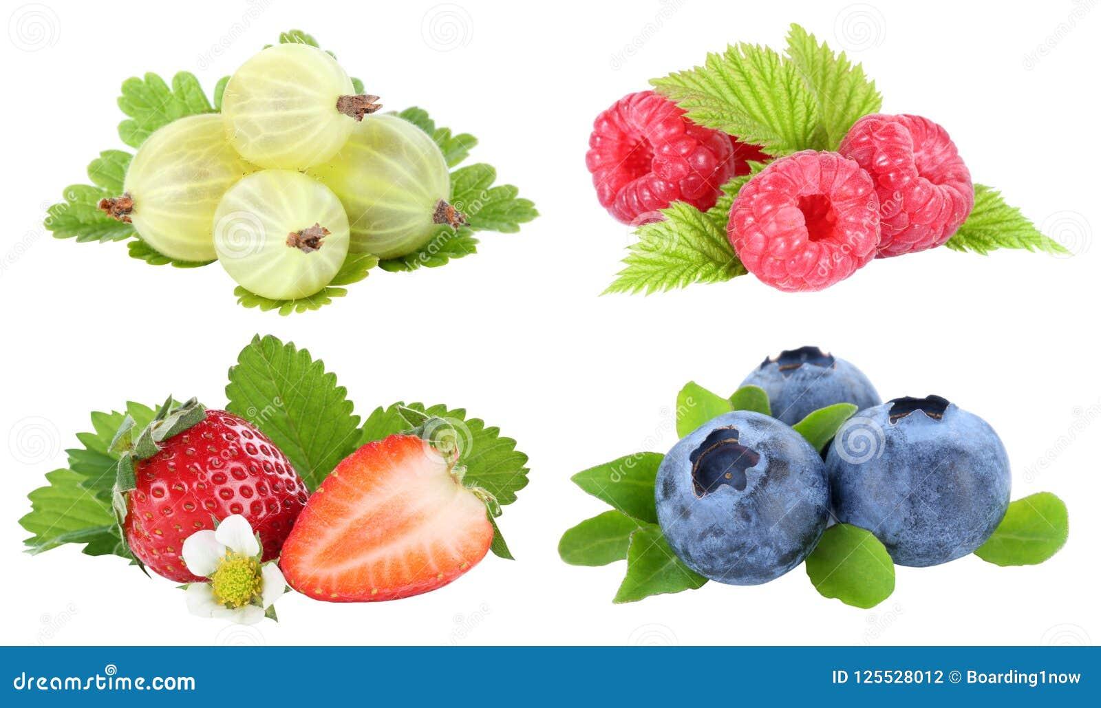 Собрание frui плодоовощей ягоды голубик клубник ягод