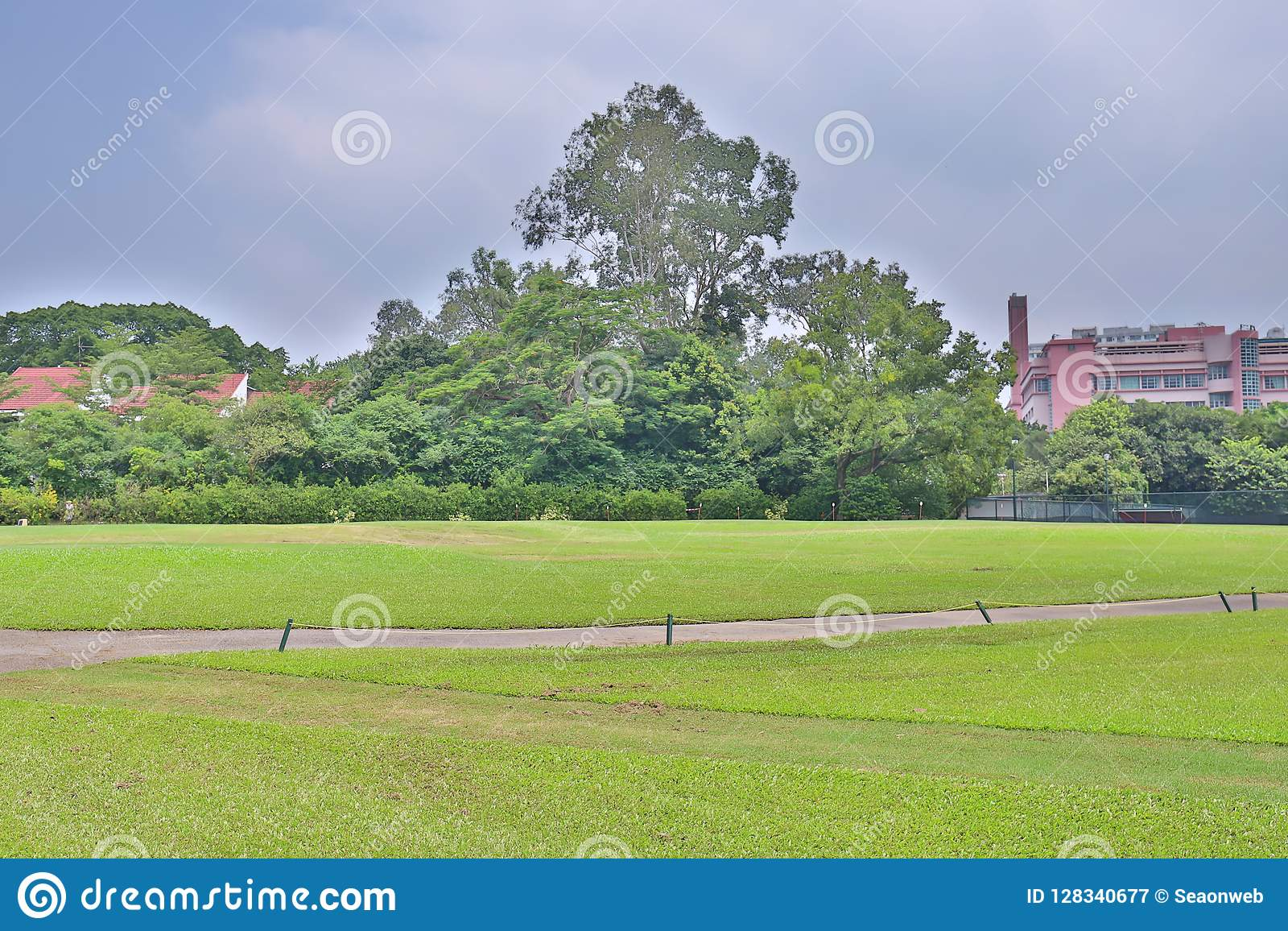совершенное поле hk поля для гольфа травы