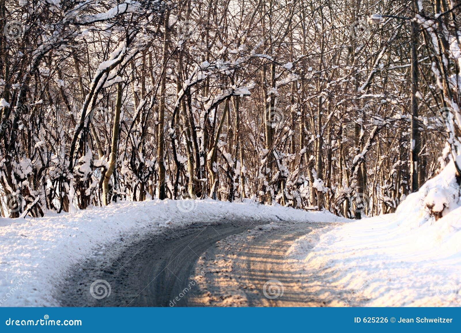 Download солнечная зима стоковое фото. изображение насчитывающей дания - 625226