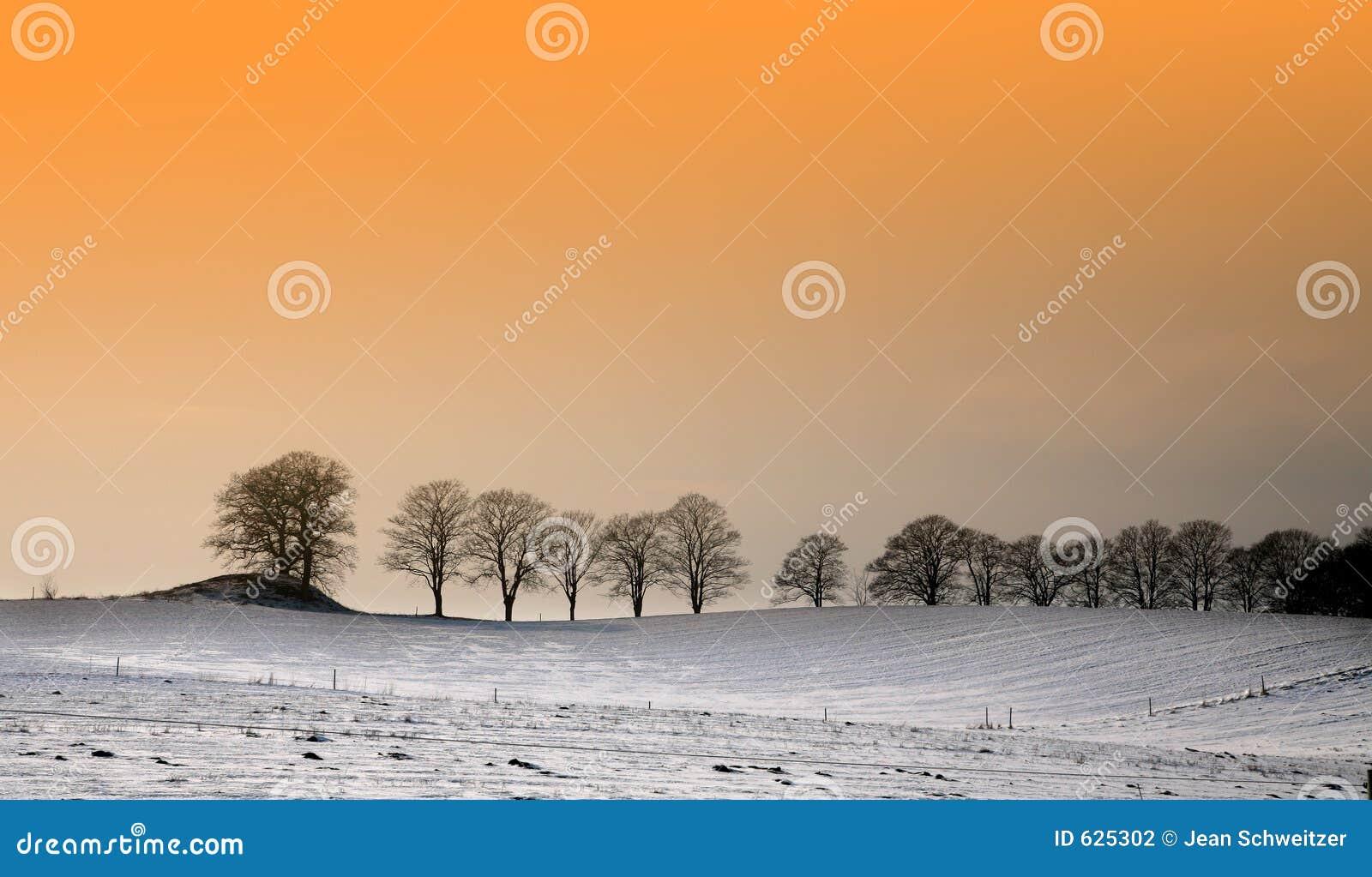 Download солнечная зима стоковое фото. изображение насчитывающей солнечно - 625302