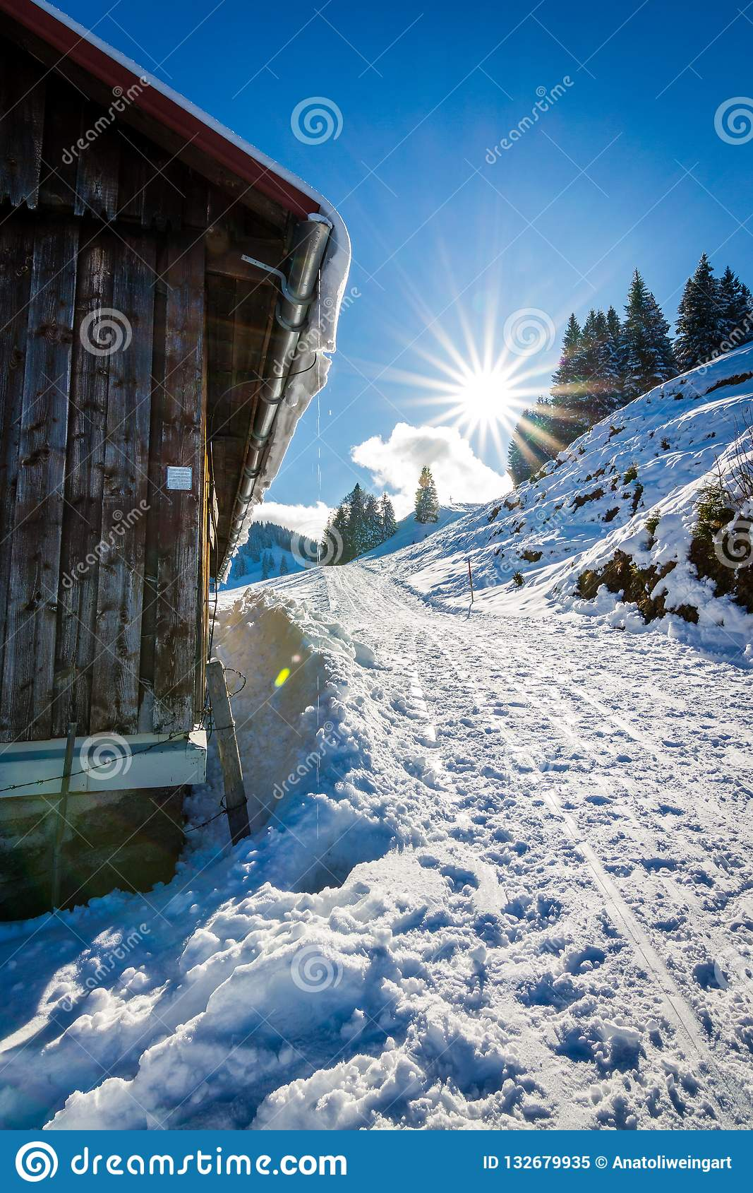 Солнечный день зимы