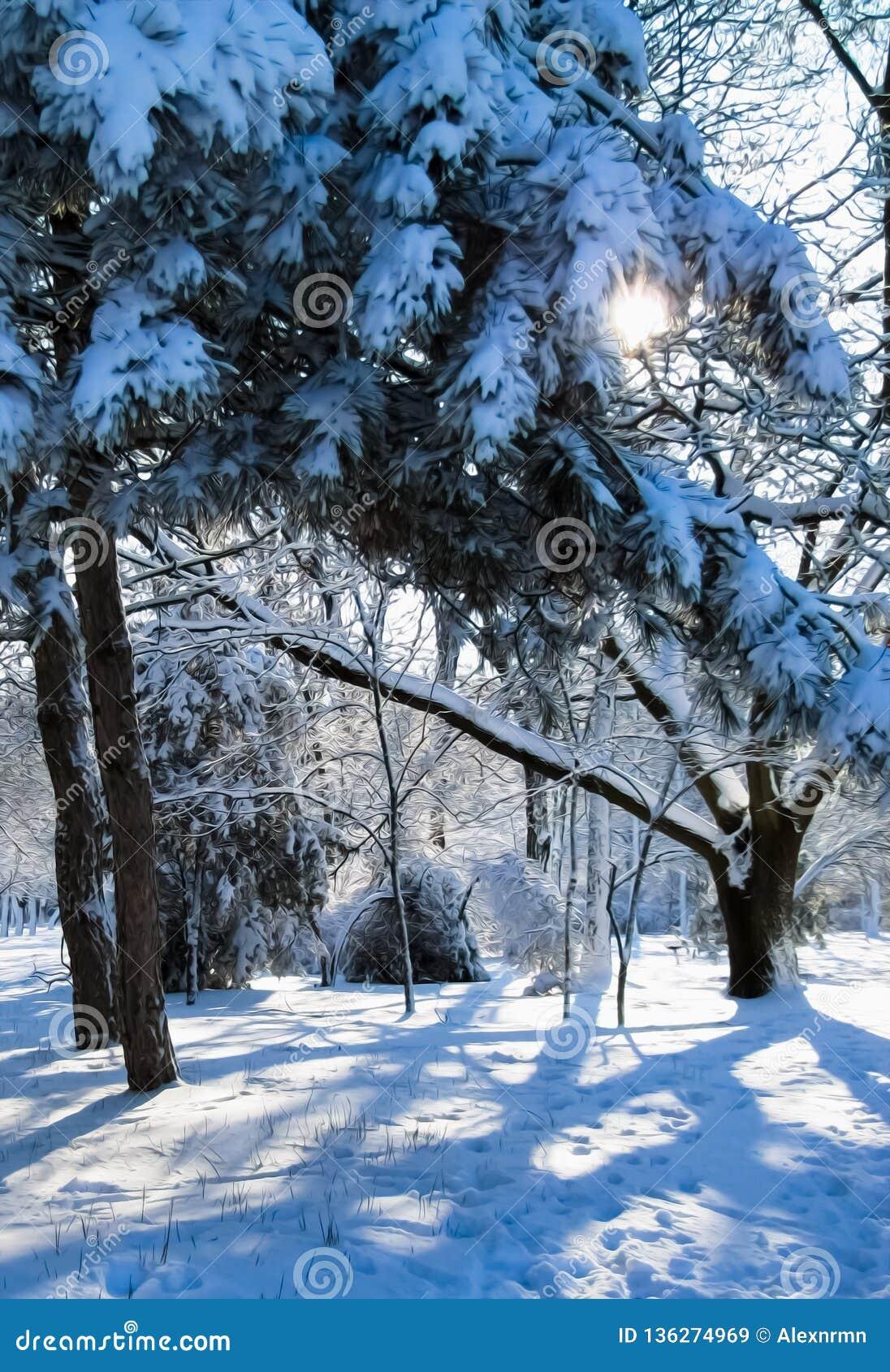 Солнечный луч делает свой путь через ветви дерева