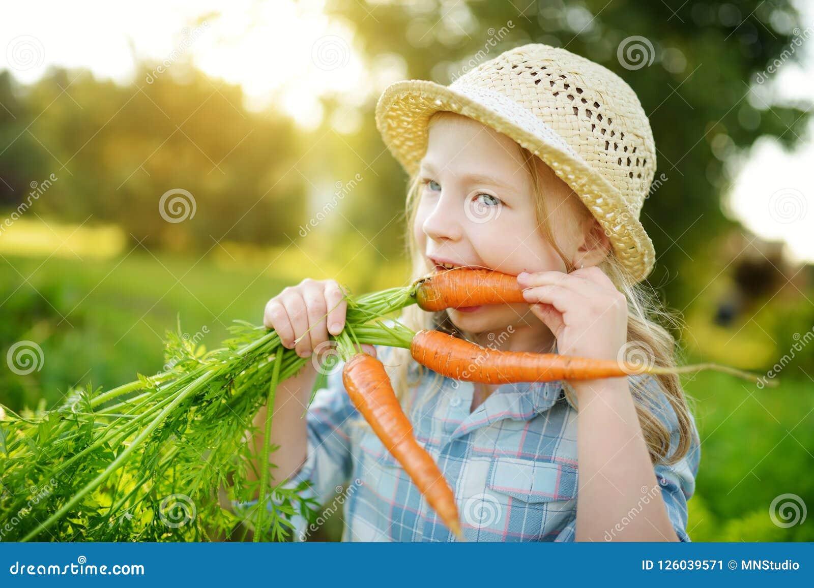 Соломенная шляпа милой маленькой девочки нося держа пук свежих органических морковей Свежие здоровые натуральные продукты для мал