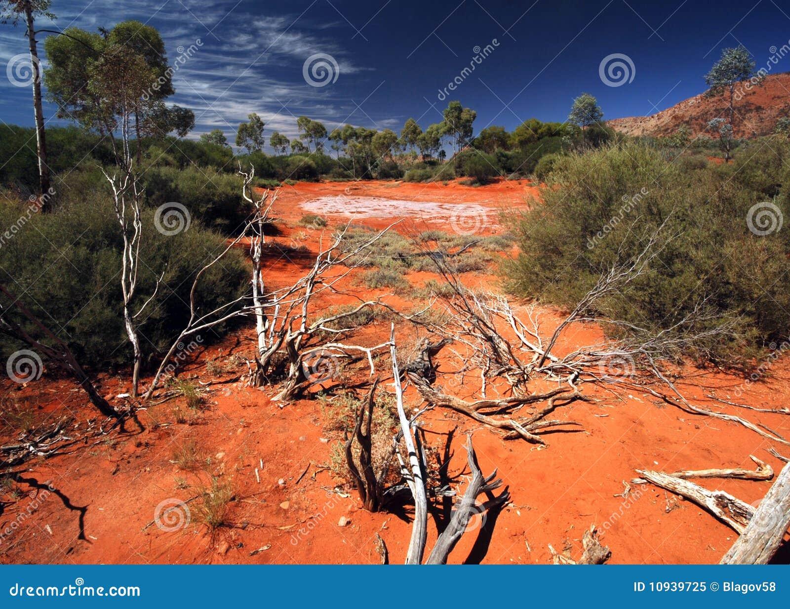 соль озера австралийской пустыни