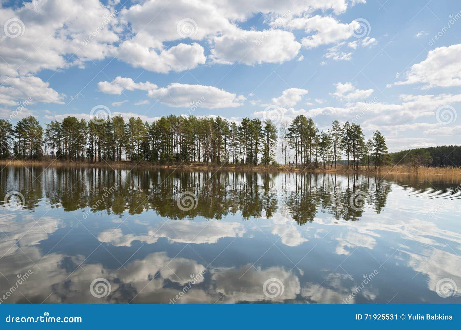 Сосны и облака отраженные в озере