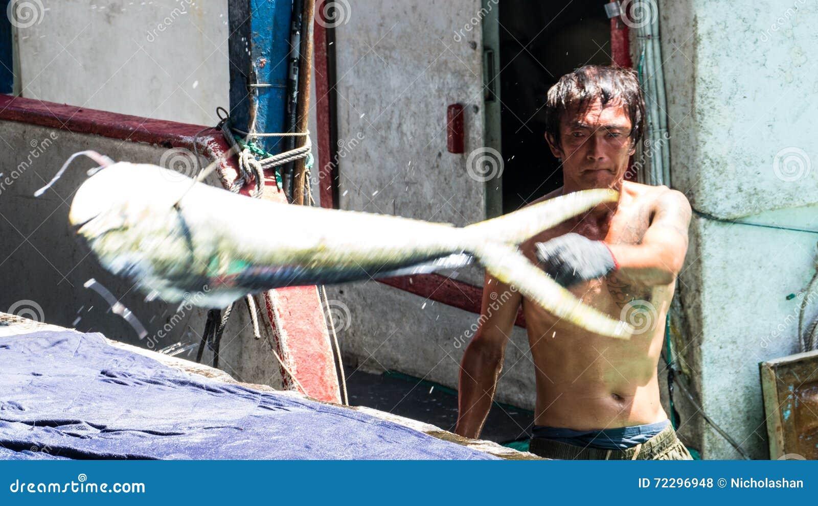 Download Состыкованная рыбацкими лодками гавань Chenggong удя извлекает липкую жидкость рыбной ловли Редакционное Стоковое Фото - изображение насчитывающей морск, цветасто: 72296948