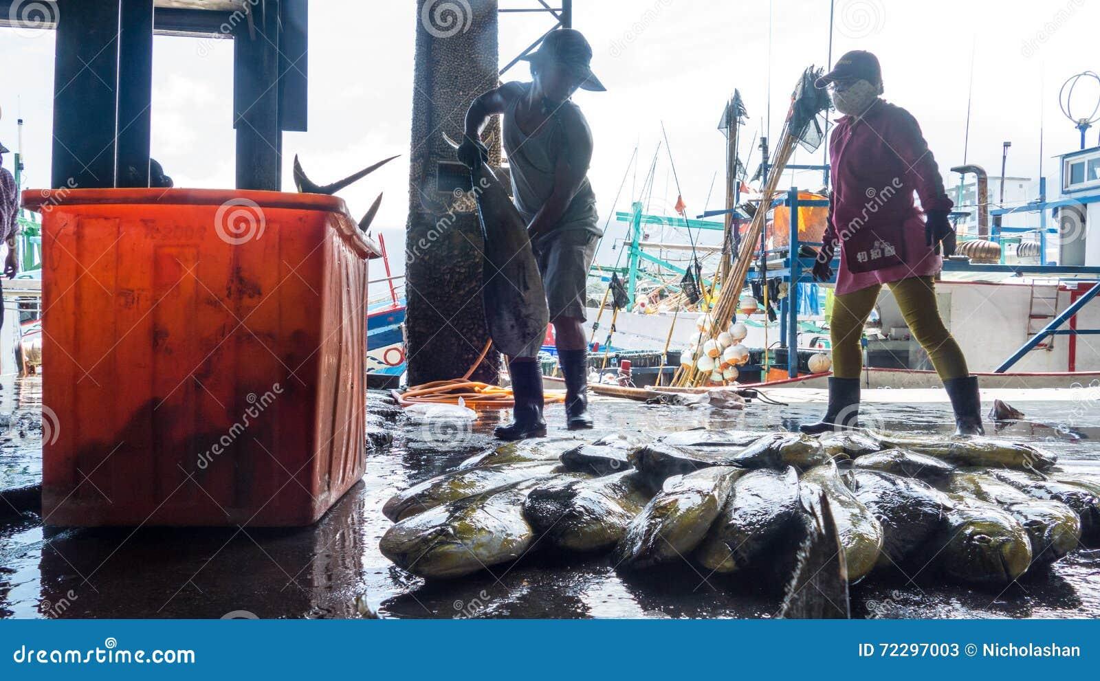 Download Состыкованная рыбацкими лодками гавань Chenggong удя извлекает липкую жидкость рыбной ловли Редакционное Стоковое Фото - изображение насчитывающей landmark, multi: 72297003