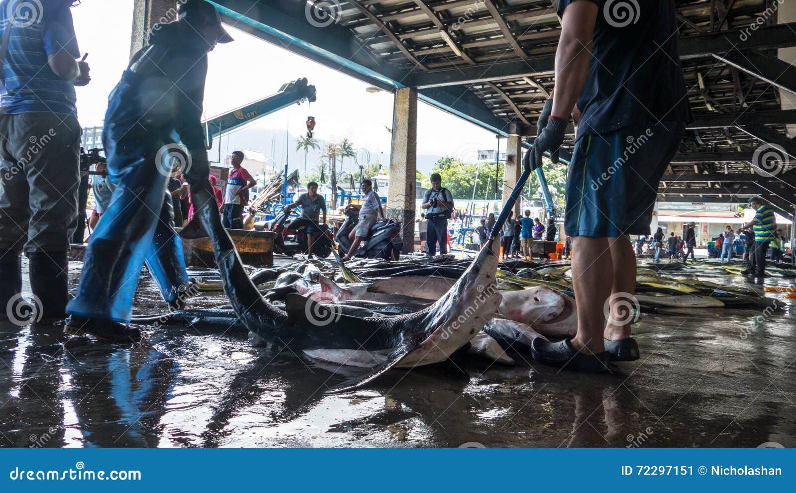 Download Состыкованная рыбацкими лодками гавань Chenggong удя извлекает липкую жидкость рыбной ловли Редакционное Фото - изображение насчитывающей цветы, порт: 72297151
