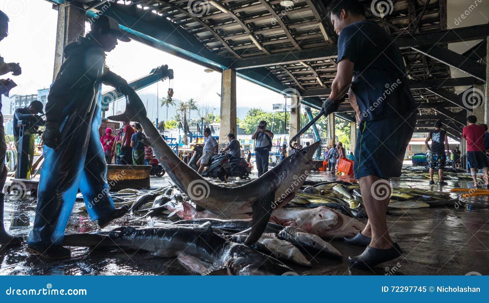 Download Состыкованная рыбацкими лодками гавань Chenggong удя извлекает липкую жидкость рыбной ловли Редакционное Изображение - изображение насчитывающей фильтровано, покрашено: 72297745